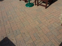 Patio after spraying